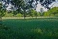 Wittmoor - Streuaaftwisch.jpg