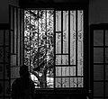 Woman and window.jpg