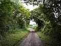 Wood Drove - geograph.org.uk - 485779.jpg