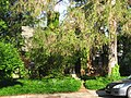 Woodlawn Avenue South, 804, Elm Heights HD.jpg