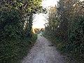 Worthing, UK - panoramio (112).jpg