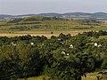 Wzgórza Bielawskie.JPG