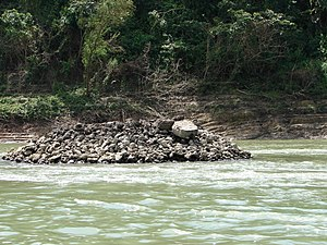 Maya Bridge at Yaxchilan - The Pile in the Usumacinta river thought to have possibly supported a suspension bridge at Yaxchilan