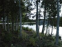Yellowknife River downstream.JPG