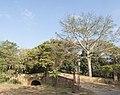 Yochicamocha028.jpg