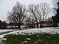 Zbraslavský klášter, zámecký park, pohled k faře a pivovaru (01).jpg