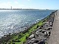 Zeemonding Nieuwe Maas.jpg