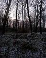 Zimowo - panoramio (3).jpg