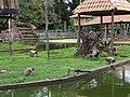 Zoológico de Manaus, criadouro dos macacos.jpg