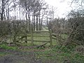 'Shropshire Way' stile at Stanbatch - geograph.org.uk - 1222015.jpg