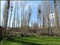 ((( نمایی از روستای بیانلوجه مراغه))) - panoramio (2).jpg