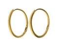 Örringar av guld - Hallwylska museet - 110027.tif