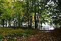 Überflutetes Elbufer Hamburg-Rissen - Orkan Gonzalo (22.10.2014) 05.jpg
