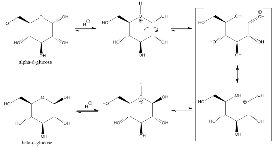 Widely proposed arrow-pushing mechanism for acid-catalyzed dynamic equilibrium between the α- and β- anomers of D-glucopyranose
