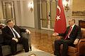 Επίσκεψη Αντιπροέδρου της Κυβέρνησης και Υπουργού Εξωτερικών Ευ. Βενιζέλου στην Τουρκία (29-30.11.2014) (15724512968).jpg