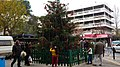 Χριστουγεννιάτικο Δένδρο Αμαρουσίου.jpg