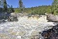 Водопад Киваккакоски. Радуга над бурлящим потоком.jpg