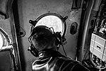 Десант Нацгвардії успішно виконав завдання у небі IMG 1515-2 (29908807942).jpg
