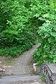 Западная часть парка Нивки. Фото 15.jpg
