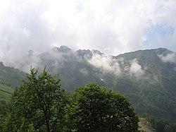 Краснополянский лесной массив.jpg