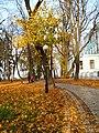Маріїнський парк 10.jpg