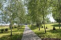Регіональний ландшафтний парк «Диканський».jpg