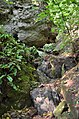 Сокілецькі водоспади - 17086856.jpg