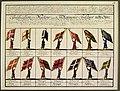 Униформы 14 московских стрелецких приказов рисунок 1674.jpg