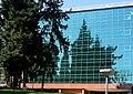 מכון וייצמן למדע (1).JPG