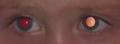 تأثير العين الحمراء 3.PNG