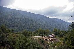 طبیعت منطقه فیل بند در استان مازندران