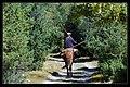 割草的牧民,巨大的镰刀看起来就像死神的武器 - panoramio.jpg