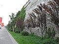 南京古城墙 - panoramio (1).jpg