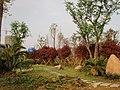 娄东大街旁边的花坛 - panoramio.jpg