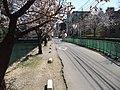 県庁と裁判所の間 - panoramio.jpg