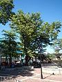 01216jfWelcome Chapel Market Roads Talavera Ecijafvf 28.JPG