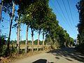 0350jfArterial Roads Talacsan Maronquillo Pulo San Rafael Bulacanfvf 17.jpg