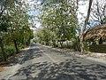 1409Malolos City Hagonoy, Bulacan Roads 10.jpg