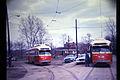 19660415 07 PAT 1764 1733 @ Travella Loop.jpg