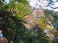 1 Minookōen, Minoo-shi, Ōsaka-fu 562-0002, Japan - panoramio (11).jpg