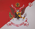 1st Squadron, 91st Cavalry Regiment Guidon.jpg