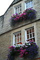 2006 windowboxes Bath England 223818155.jpg