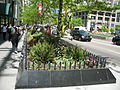 20070513 Magnificent Mile Garden Planter.JPG