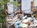 2008년 중앙119구조단 중국 쓰촨성 대지진 국제 출동(四川省 大地震, 사천성 대지진) SSL26888.JPG