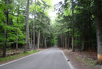 """Cross Village Township, Michigan - The """"Tunnel of Trees"""" portion of M-119 running between Good Hart and Cross Village"""