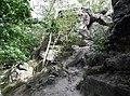 20140818010DR Oelsa (Rabenau) Naturdenkmal Götzenbusch.jpg