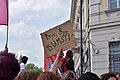 2019-05-18 - Demo für Neuwahlen nach Ibiza-Affäre - 17.jpg