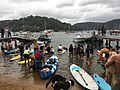 2019 Scotland Island Pittwater NSW Christmas Day pooch race 6.jpg