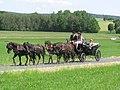 21te Rammenauer Schlossrundfahrt der Pferdegespanne (136).jpg