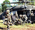 25th Inf Div Air Assault.jpg